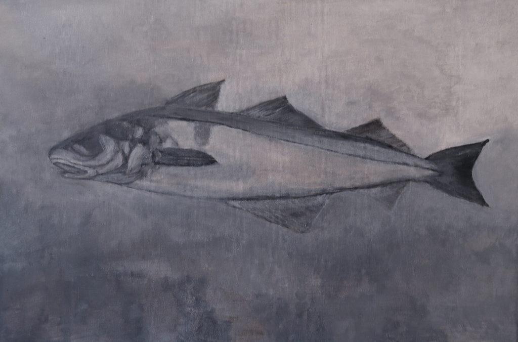 Haddock (40x60)